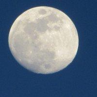 Луна :: Mariya laimite