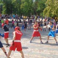 Бокс - это обмен мнениями при помощи жестов!... :: Алекс Аро Аро