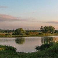 Мягкий вечерний свет :: Лара Симонова