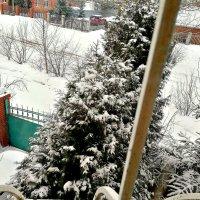 31 марта. :: Михаил Столяров