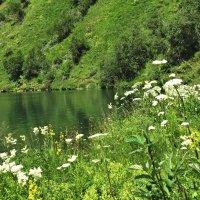 На озере :: Фиклеев Александр