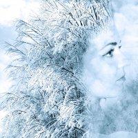 Зима :: Юрий Захаров