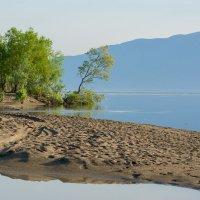Южный берег Телецкого озера :: Валерий Михмель