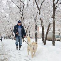 Охотничья прогулка :: юрий Амосов