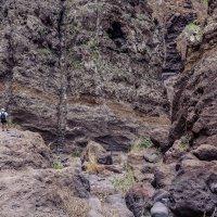 Тропа в ущелье :: Константин Шабалин