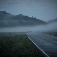 По дороге в туман :: Надежда Преминина