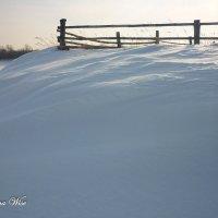 Зимой :: Elena Wise