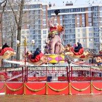 Веселые слонята или выходной в парке :: Елена Иванова