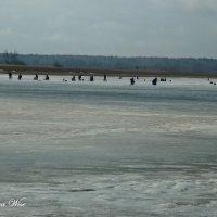 Зимняя рыбалка :: Elena Wise