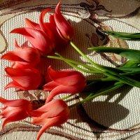 Любимцы весны!... :: Лидия Бараблина