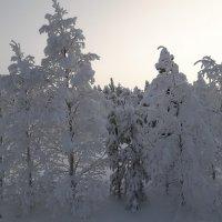 Финляндия :: Mari Kush