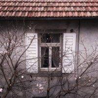 Чужие окна манят :: Мари Соколкина