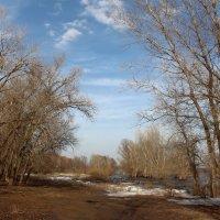 Весенний пейзажЪ :: Dr. Olver ( ОлегЪ )