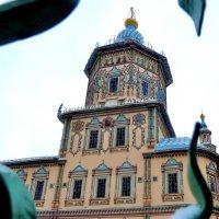 Петропавловский собор в Казани. Собор Петра и Павла :: Наталья Т