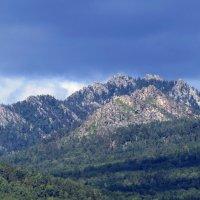 Гора Малиновая :: Вера Щукина