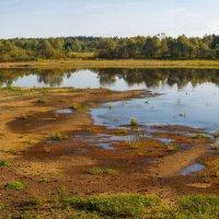 Засуха на Припяти :: Николай Котко