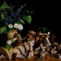 Лесной натюрморт :: Нэля Лысенко