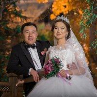 жених и невеста :: Геннадий Никулочкин