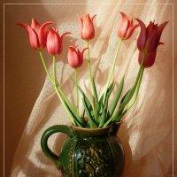 Бокальчики тюльпанов в вазе... :: Лидия Бараблина