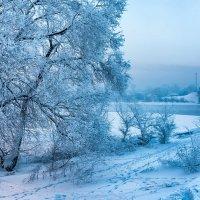 Морозный вечер(-25) :: alteragen Абанин Г.