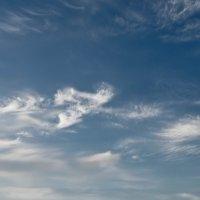 Весеннее небо :: Никита Санов