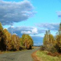 Дорога домой :: Нина