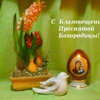 С Благовещением!!! :: Тамара (st.tamara)