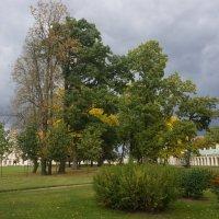 Осень в парке. :: Татьяна Гусева