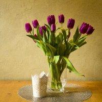 тюльпаны :: Светлана Павловская