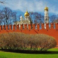 Кремлёвская весна :: Natali Positive