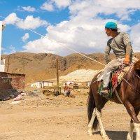 Подъёмный кран на конной тяге :: Сергей Карцев
