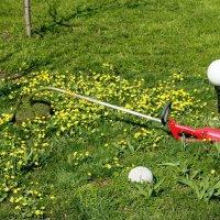 второй покос травы в этом году :: Илья Скупой