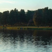 тишина над прудом :: Александр