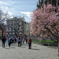 В город весна пришла :: Boris Alabugin
