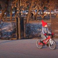Спортсмены :: Константин Чебыкин