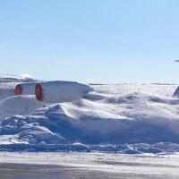 занесённые снегом :: Денис Трофимов