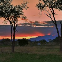 По дороге из национального парка Танзании :: Александр Бойченко