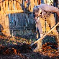 Весна - это ответственное время для садоводов и овощеводов :: Дарья