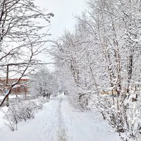 Апрельский снег. :: Михаил Николаев
