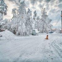 Утро нового года. :: Алексей Хаустов