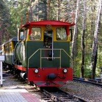 Поезд прибыл :: Марина Таврова