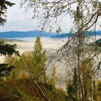 Окутал долину туман :: Сергей Чиняев