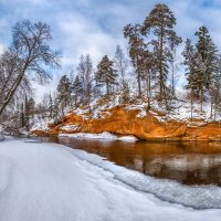 Оранжево-белая весна :: Фёдор. Лашков