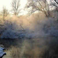 р.Сходня. Зима. -28* :: Ирина Via
