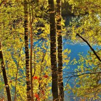 Осенний вечер у реки :: Сергей Чиняев