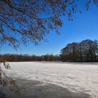 Весенний день на реке :: Алексей (GraAl)