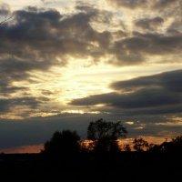 На закате... :: Светлана Z.