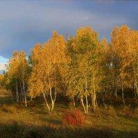 Вечер в сентябре :: Сергей Чиняев