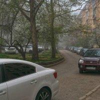 Автомобили, автомобили... :: Игорь Кузьмин