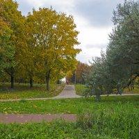 Осенним днём :: Анатолий Цыганок